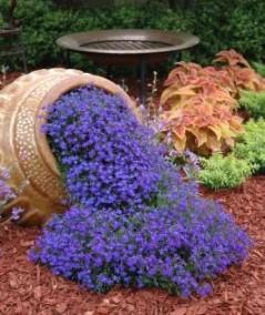 Bahçenizi güzelleştirmek için parlak fikirler